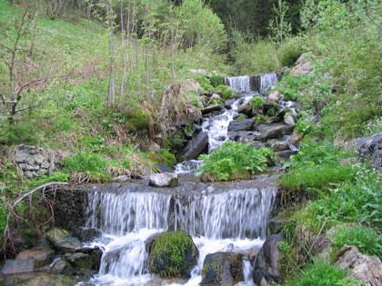 Vébrův potok - stupně z drátokosu již zarostlé vegetací