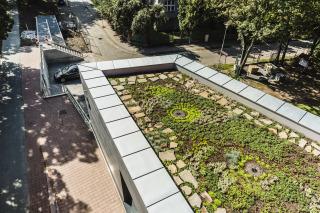 Retenční vegetační střechy (foto: Tomáš Malý)