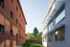 Průhled do zeleně mezi budovami Otakar a Sylvie