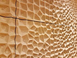 """Obr. 51 Detail kontinuální textury panelů """"bílé kůže"""" ve Velkém sále"""