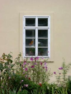 Obr. 10 Příklad užití nenasákavých omítek na fasádě i v interiéru stavby.