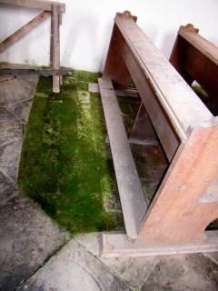 Obr. 08 Vzlínající vlhkost nadměrně zatěžuje původní nasákavou cihelnou podlahu, na snímku pod vrstvou biofilmu. V ohrožení je i dřevěný mobiliář, který od nadměrně vlhké podlahy navlhá a rychle degraduje
