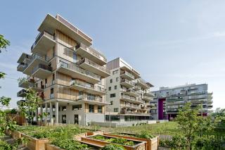 Krakauerstraße 19 – projekt skupinového bydlení, pohled ze zahrady přes nájemní záhony na obytný dům