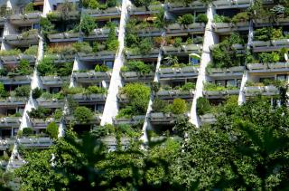 Obytný park Alt-Erlaa – touha po vlastní zahrádce ve městě