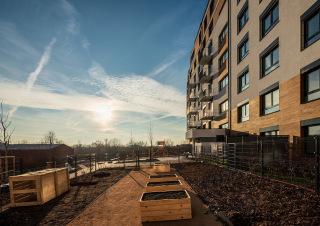 Obr. 07 Exteriér stavby, plochá střecha s extenzivní zelení nad komerčními prostory