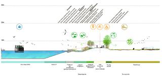 Příčný profil nové vodní cesty třídy Vb – průplav Seina – severní Evropa, Francie - oblast intravilánů, příměstských parků, rekreačních oblastí