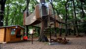 3D bludiště, soutěžící Město Osek; Vítěz veřejného hlasování v kategorii Dřevěná hřiště – velká