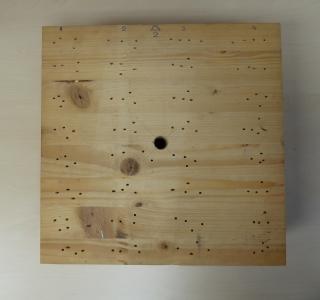 Obr. 4a Vzorek lepeného lamelového dřeva pro kalibraci přístroje - náhled se zkušebními vpichy