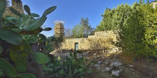 Pohled na vyhlídkovou věž z přilehlého parku sousedícího s areálem Hansen House